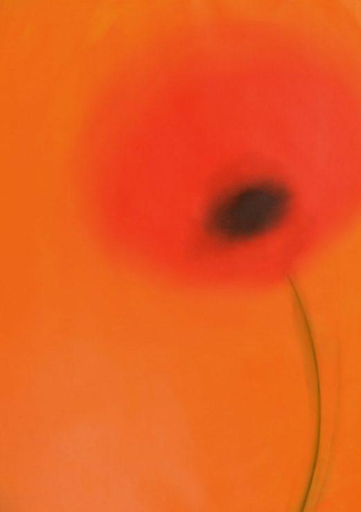 Zelda Sartori papaveri arte moderna pittura